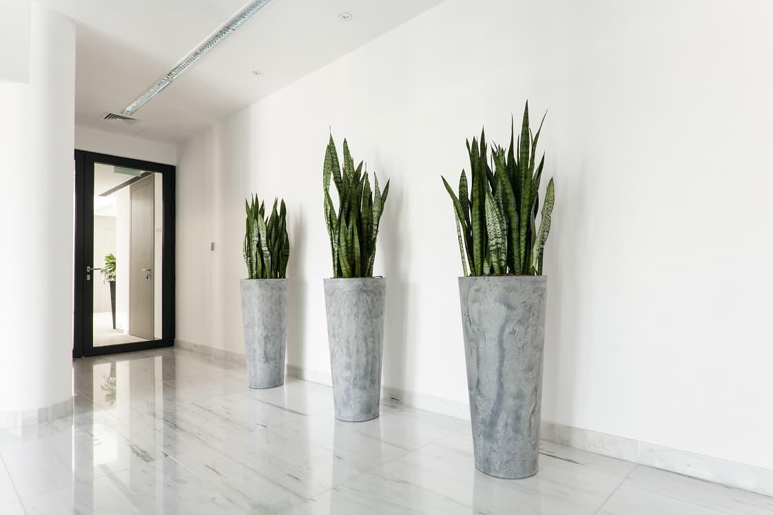 hallway-planters-min.jpg