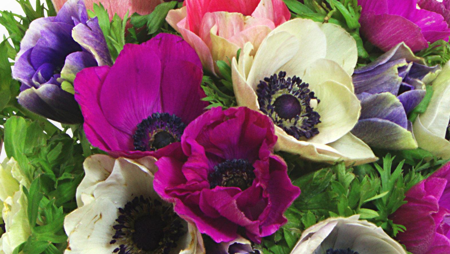 Biggest Flower Bouquet Images - Flower Wallpaper HD