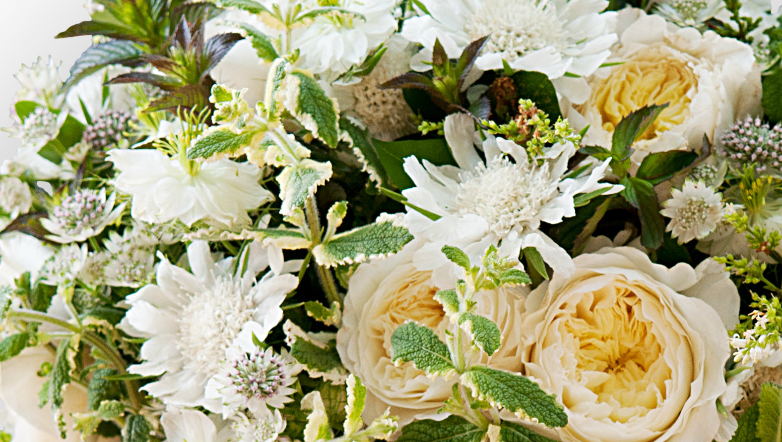 All White Luxury Funeral Posy Flower Delivery Flower Station